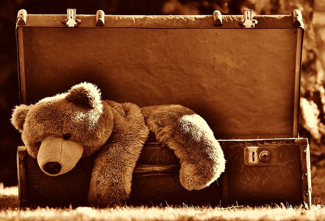 A teddy bear in the box