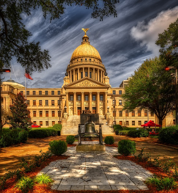 Your kids will love Jackson because of Capitol.