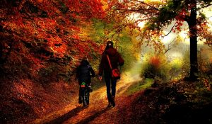 A mother and child walking through the forest