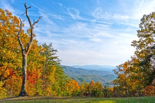 Charming Tennessee places